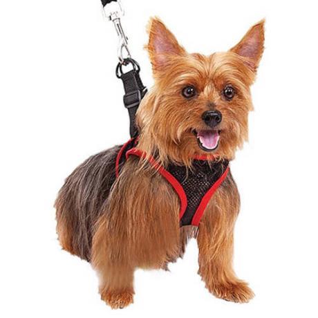 Comfy Control каишка за кучета